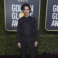Timothée Chalamet at the Golden Globes 2019 red carpet