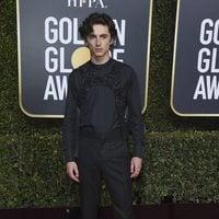 Timothée Chalamet at the Golden Globes 2019 red carpet