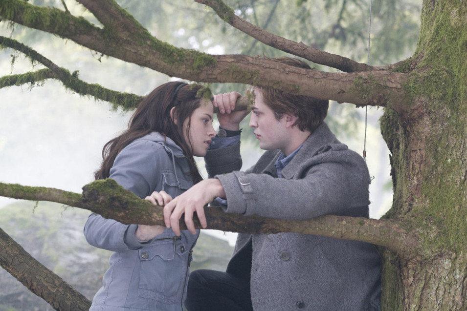 Twilight, fotograma 27 de 34
