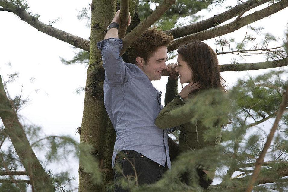 Twilight, fotograma 34 de 34