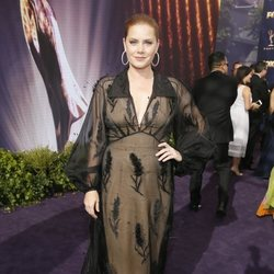 Amy Adams at the Emmy 2019 red carpet