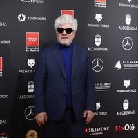 Pedro Almodóvar at the Feroz Awards 2020 red carpet