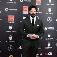 Álvaro Morte at the Feroz Awards 2020 red carpet