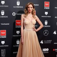 María Hervás at the Feroz Awards 2020 red carpet