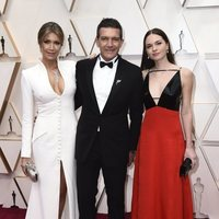 Antonio Banderas on the red carpet at the 2020 Oscar Awards