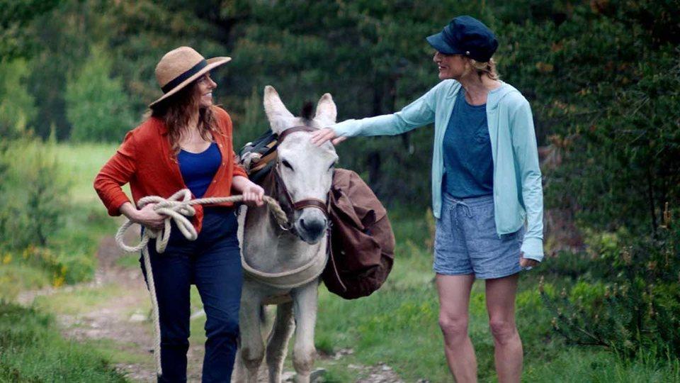 My Donkey, My Lover & I, fotograma 6 de 10