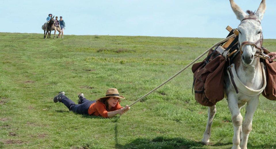 My Donkey, My Lover & I, fotograma 4 de 10