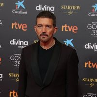 Antonio Banderas at the red carpet of the 35th edition of the Goya Awards