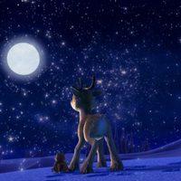 Niko & The Way to the Stars