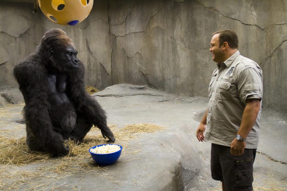 Zookeeper, fotograma 28 de 30