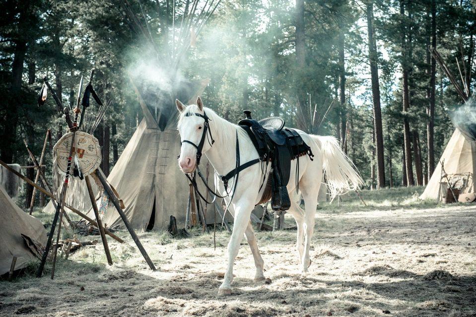 The Lone Ranger, fotograma 22 de 72