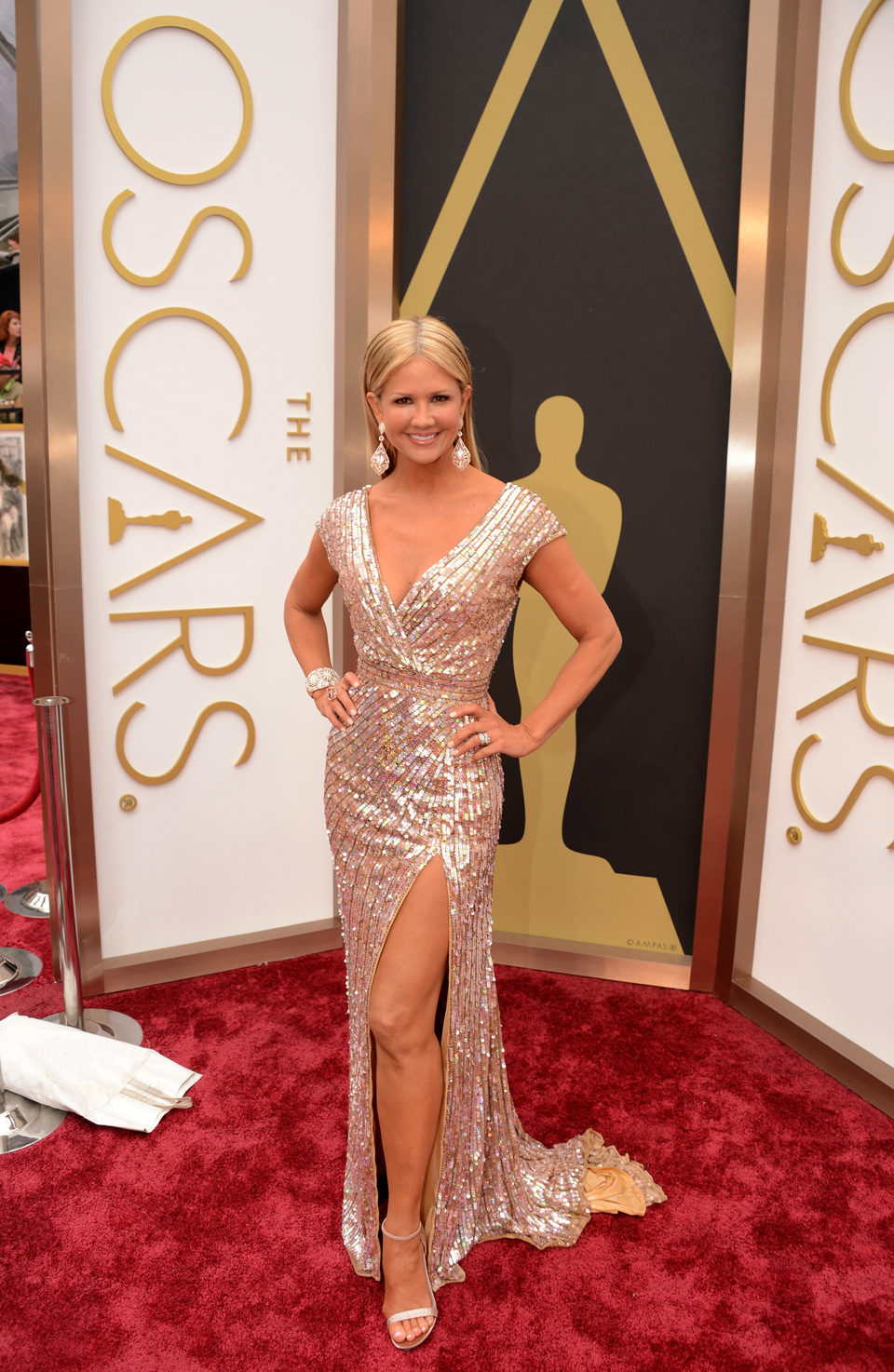 Nancy O'Dell at the 2014 Academy Awards