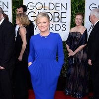 Amy Poehler at the Golden Globes 2015 red carpet