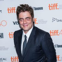 Benicio del Toro at the Toronto International Film Festival 2015