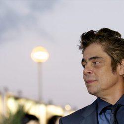 Benicio del Toro at the San Sebastian Film Festival 2015
