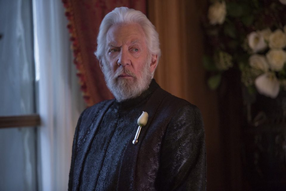 The Hunger Games: Mockingjay - Part 2, fotograma 21 de 31