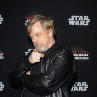Mark Hamill in the Star Wars Celebration