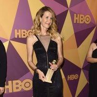 Laura Dernwins bestr support actress in series at Golden Globes 2018