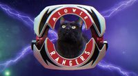 Power Ranger's intro with cats