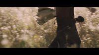 Original trailer 'Un sac de billes'