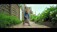 'Peter Rabbit' Trailer 2