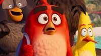 https://www.movienco.co.uk/trailers/the-angry-birds-movie-2-teaser-trailer/