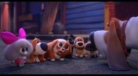 https://www.movienco.co.uk/trailers/the-secret-life-of-pets-2-trailer/