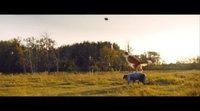 https://www.movienco.co.uk/trailers/a-dog-journey-spanish-trailer/