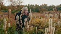 https://www.movienco.co.uk/trailers/five-seasons-the-gardens-of-piet-oudolf-teaser/