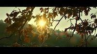 https://www.movienco.co.uk/trailers/clip-1-the-wild-pear-tree/