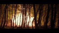 https://www.movienco.co.uk/trailers/angel-has-fallen-clip-forest-bombing/
