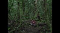 https://www.movienco.co.uk/trailers/the-nightingale-trailer-2/