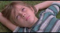 https://www.movienco.co.uk/trailers/trailer-boyhood/