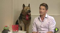 https://www.movienco.co.uk/trailers/interview-with-rob-lowe-sex-tape/