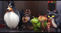 'The Secret Life of Pets' Super Bowl Spot